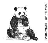 vector realistic sketch of cute ... | Shutterstock .eps vector #1047415921