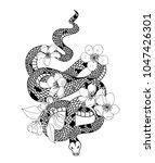 red snake vector and cherry...   Shutterstock .eps vector #1047426301