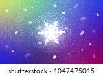 light multicolor vector pattern ... | Shutterstock .eps vector #1047475015
