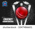 vector illustration of sports... | Shutterstock .eps vector #1047486601