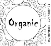 black and white banner fruit... | Shutterstock .eps vector #1047505471