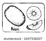 black and white fruit sketch... | Shutterstock .eps vector #1047538207