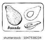 black and white fruit sketch... | Shutterstock .eps vector #1047538234