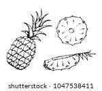 black and white fruit sketch... | Shutterstock .eps vector #1047538411