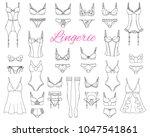 fashionable  female lingerie... | Shutterstock .eps vector #1047541861