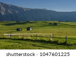 summer in alpe di siusi seiser... | Shutterstock . vector #1047601225