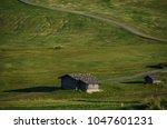 summer in alpe di siusi seiser... | Shutterstock . vector #1047601231