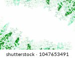 lily of the valley flower on... | Shutterstock . vector #1047653491