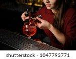 woman bartender pouring bitter... | Shutterstock . vector #1047793771