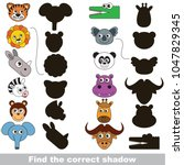 safari animals set to find the... | Shutterstock .eps vector #1047829345
