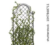 Pergola With Flowers And Iron...