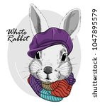 Stock vector vector rabbit with violet cap and knitted scarf hand drawn illustration of dressed rabbit 1047895579