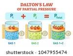 dalton's law  chemical physics... | Shutterstock .eps vector #1047955474