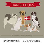 dogs by country of origin.... | Shutterstock .eps vector #1047979381