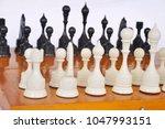 chessmen on the board   Shutterstock . vector #1047993151