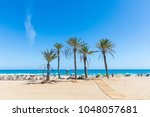 seaside in alicante  with palm...   Shutterstock . vector #1048057681