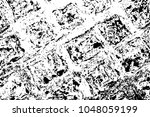 stone ornament surface. black... | Shutterstock .eps vector #1048059199