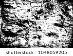 grungy stone surface. black and ... | Shutterstock .eps vector #1048059205
