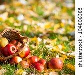 Basket Full Of Red Juicy Apple...