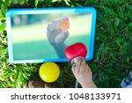uncertainty with bitcoin in...   Shutterstock . vector #1048133971