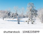 winter natural landscape  the... | Shutterstock . vector #1048235899