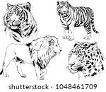 vector drawings sketches... | Shutterstock .eps vector #1048461709