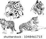 vector drawings sketches... | Shutterstock .eps vector #1048461715