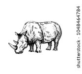 Hand Drawn Rhino. Sketch ...
