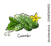 illustration of cucumbers with... | Shutterstock .eps vector #1048569401