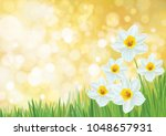 vector  nature background ... | Shutterstock .eps vector #1048657931