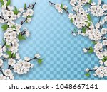 set of spring blooming fruit... | Shutterstock .eps vector #1048667141