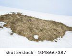 land during the end of winter   ... | Shutterstock . vector #1048667387