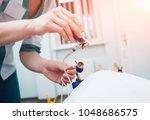 doctor with electrocardiogram...   Shutterstock . vector #1048686575
