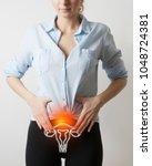 visualisation of genito urinary ...   Shutterstock . vector #1048724381