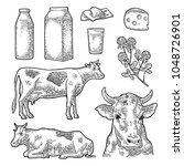 set milk farm. cow head  clover ... | Shutterstock .eps vector #1048726901