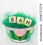 Small photo of Easter basket filled with grouch's BAH HUMBUG sentiment.