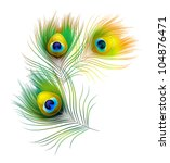 peacock feather | Shutterstock .eps vector #104876471