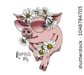 pig in a sunglasses and in a... | Shutterstock .eps vector #1048784705