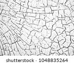 white black grey texture... | Shutterstock . vector #1048835264