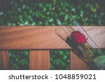 a single rose on a memorial... | Shutterstock . vector #1048859021