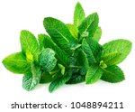 Fresh Spearmint Leaves Isolated ...