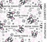 boston terrier   dog breed... | Shutterstock .eps vector #1048937084