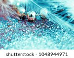 soft feather with sparkles with ... | Shutterstock . vector #1048944971