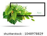 bright tropical background with ... | Shutterstock .eps vector #1048978829