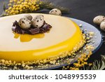 easter cake with yellow mirror... | Shutterstock . vector #1048995539