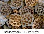 Dry Lotosfruit