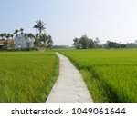 narrow road between beautiful... | Shutterstock . vector #1049061644