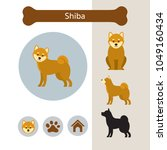 shiba dog breed infographic ... | Shutterstock .eps vector #1049160434