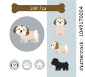 shih tzu dog breed infographic  ... | Shutterstock .eps vector #1049170004