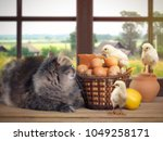 Funny Easter Still Life With A...